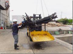 台風19号が猛威・川崎港に大量のゴミが流入